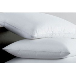 Egyptian Cotton Pillows  2 & 4 Pack